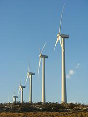 turbinas-eolicas